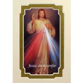 The Divine Mercy  Spanish 3x5 Prayerful Mat #35MAT-DM-SP